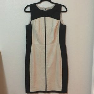 Ann Taylor dress  size 10